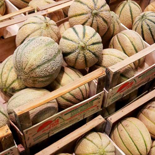 Meloen Sorbetijs