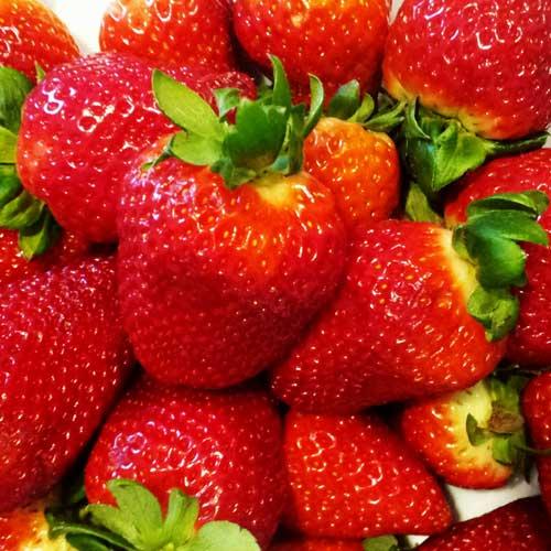 Aardbeien met Mozzarella Stracciatella